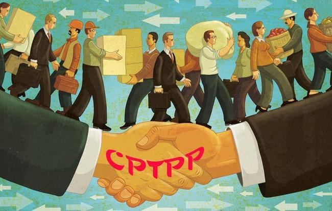 CPTPP biến Việt Nam thành thị trường chung, tạo ra sức ép cạnh tranh cho doanh nghiệp