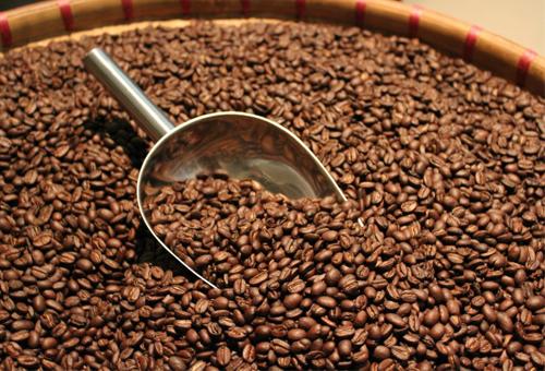 Chất lượng cà phê luôn là thứ Bloostein đề cao. Ông muốn tự rang xay cà phê cho cửa hàng mình