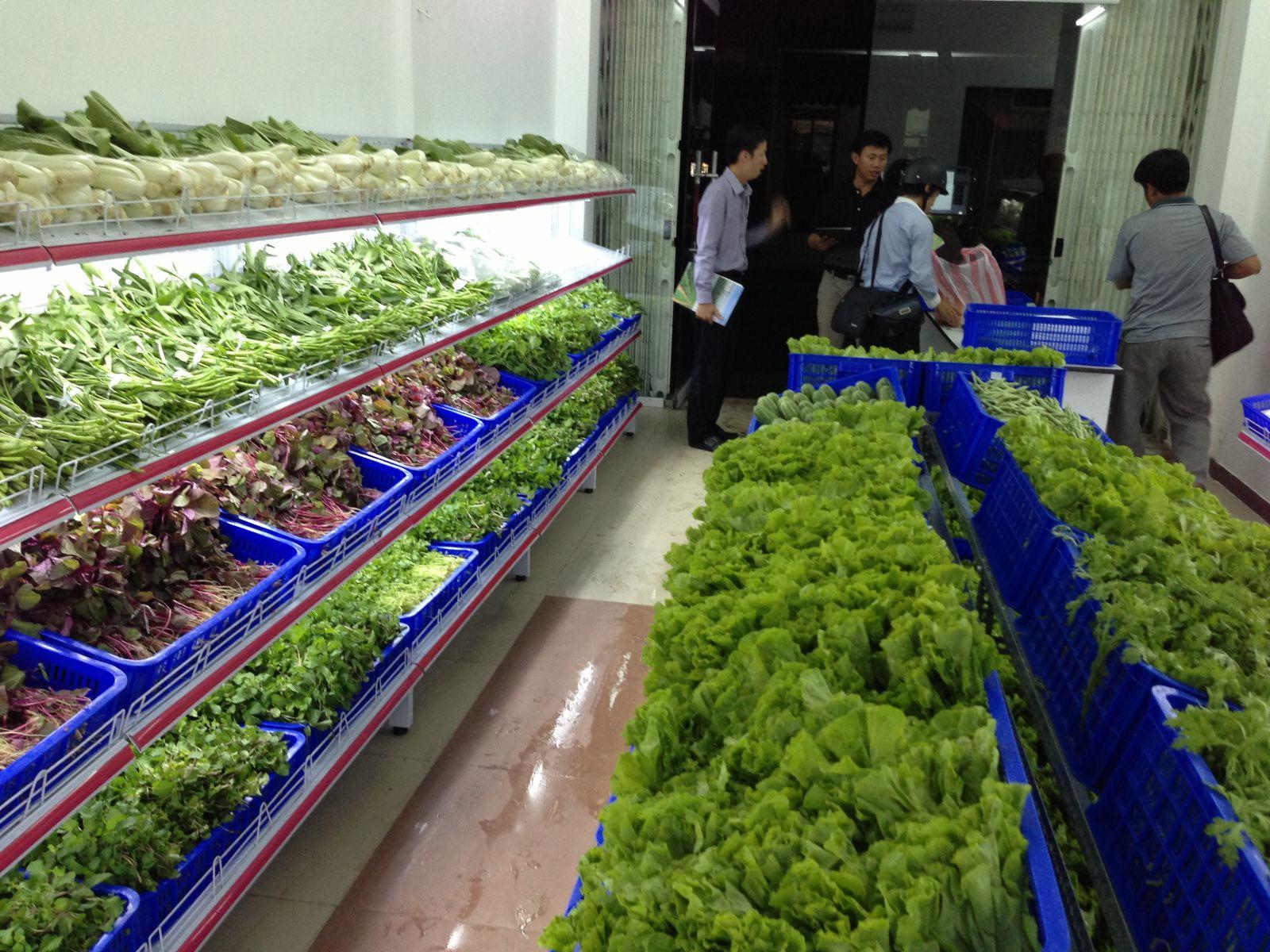 Quản lý cửa hàng kinh doanh rau sạch thế nào cho hiệu quả?